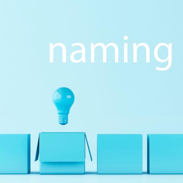 5-NAMING-identidad-verbal